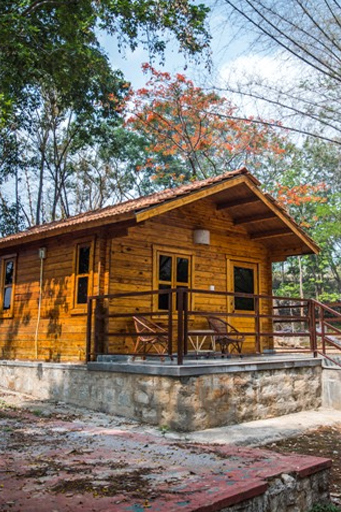 Bannerghatta Nature Camp 768x1130