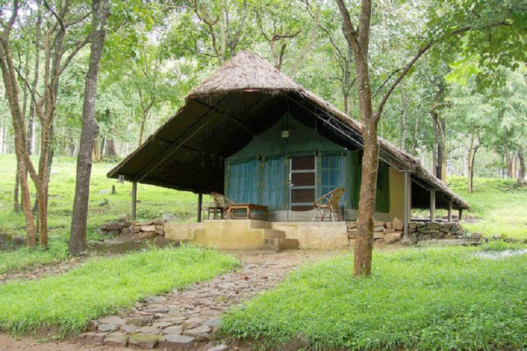 K Gudi Wilderness Camp768x512