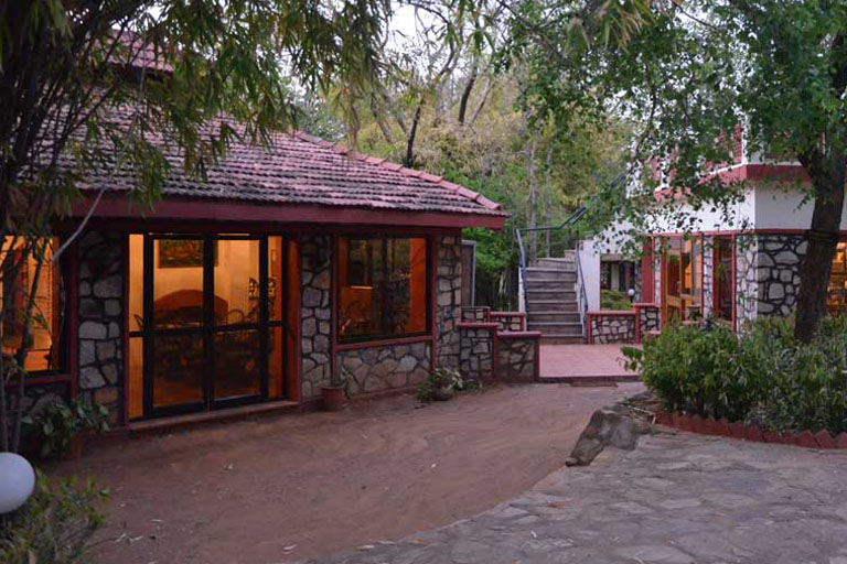 Tiger moon resort ranthambhore 768x512